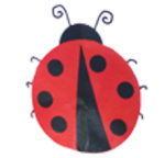 City of San Antonio Head Start - Ladybug